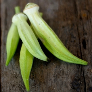 Okra - Blondy - (semená)