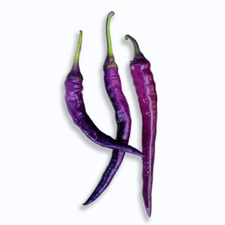 Cayenne purple (semená)